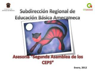 """Asesoría """"Segunda Asamblea de los CEPS"""""""