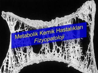 Metabolik Kemik Hastalıkları Fizyopatoloji