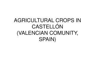 AGRICULTURAL CROPS IN CASTELLÓN  (VALENCIAN COMUNITY, SPAIN)