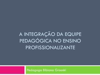 A Integração da Equipe Pedagógica no Ensino Profissionalizante