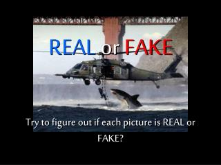 Try to figure out if each picture is REAL or FAKE?