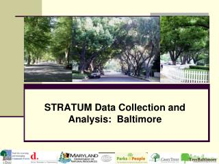 STRATUM Data Collection and Analysis:  Baltimore