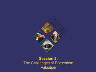 Session 2:  The Challenges of Ecosystem Valuation
