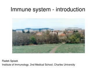 Immune system - introduction