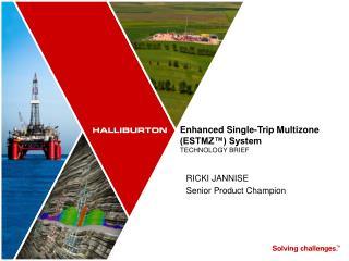 Enhanced Single-Trip Multizone (ESTMZ™) System TECHNOLOGY BRIEF
