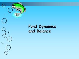 Pond Dynamics and Balance