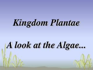Kingdom Plantae A look at the Algae...