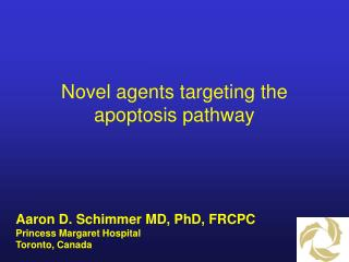 Novel agents targeting the apoptosis pathway