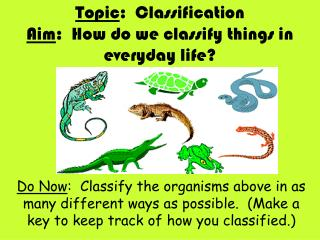 Topic :  Classification Aim :  How do we classify things in everyday life?