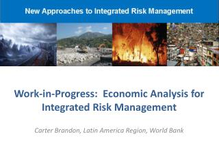 Work-in-Progress:  Economic Analysis for Integrated Risk Management