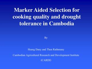 Marker Aided Selection for cooking quality and drought tolerance in Cambodia