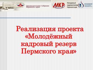 Реализация проекта «М олодёжный кадровый резерв Пермского края»
