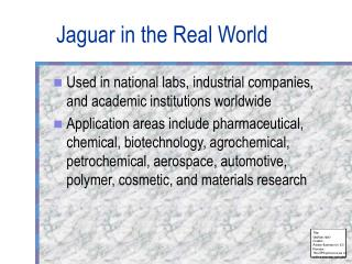 Jaguar in the Real World
