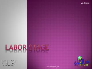 Labor Stage