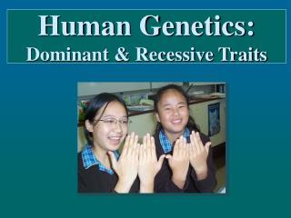 Human Genetics:  Dominant  Recessive Traits