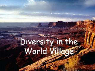 Diversity in the World Village