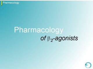 14102003124916Pharmacology of B2 agonists