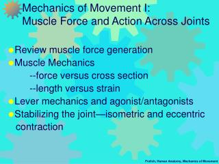 Mechanics of Movement I:   Muscle Force and Action Across Joints