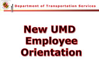 Department of Transportation Services