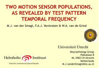TWO MOTION SENSOR POPULATIONS, AS REVEALED BY TEST PATTERN TEMPORAL FREQUENCY