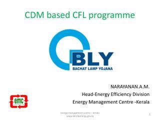 CDM based CFL programme