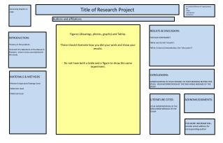 Title of Research Project