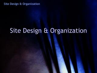 Site Design & Organization