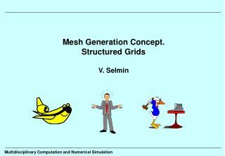 Mesh Generation Concept. Structured Grids V. Selmin
