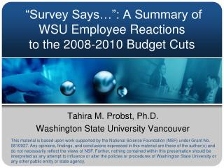 """Survey Says…"": A Summary of  WSU Employee Reactions  to the 2008-2010 Budget Cuts"
