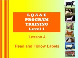 L Q A & E PROGRAM  TRAINING Level 1