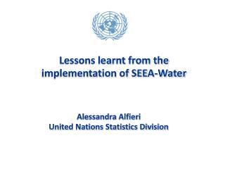 Alessandra Alfieri United Nations Statistics Division