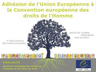 Adhésion de l'Union Européenne à la Convention européenne des droits de l'Homme