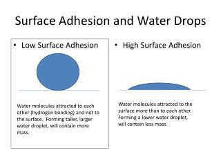 Surface Adhesion and Water Drops