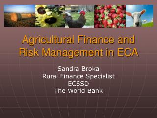 Agricultural Finance and Risk Management in ECA