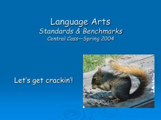 Language Arts Standards & Benchmarks Central Cass�Spring 2004