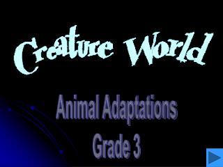Animal Adaptations Grade 3