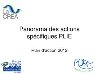 Panorama des actions spécifiques PLIE