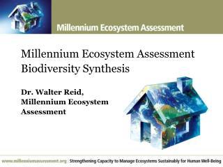 Millennium Ecosystem Assessment Biodiversity Synthesis  Dr. Walter Reid,  Millennium Ecosystem  Assessment