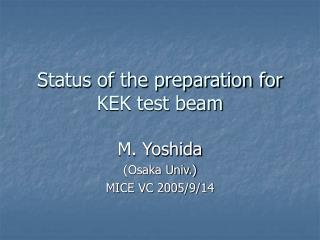 Status of the preparation for KEK test beam