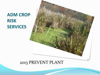 ADM CROP RISK SERVICES