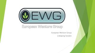 European Wenture Group Linköping Sweden