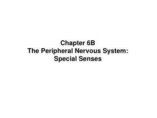 Chapter 6B The Peripheral Nervous System:  Special Senses