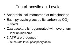 Tricarboxcylic acid cycle