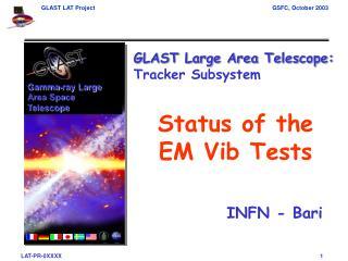 Status of the EM Vib Tests