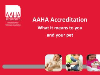 AAHA Accreditation What it means to you  and your pet