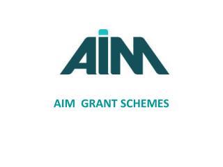 AIM  GRANT SCHEMES