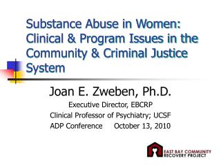 Substance Abuse in Women:  Clinical & Program Issues in the Community & Criminal Justice System