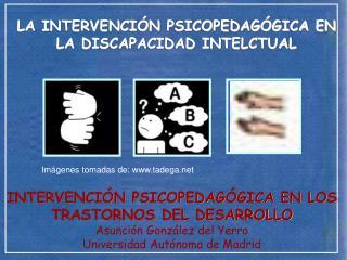 LA INTERVENCIÓN PSICOPEDAGÓGICA EN LA DISCAPACIDAD INTELCTUAL