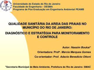 QUALIDADE SANITÁRIA DA AREIA DAS PRAIAS NO MUNICÍPIO DO RIO DE JANEIRO: