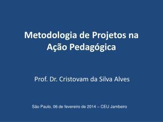 Metodologia de Projetos na A��o Pedag�gica